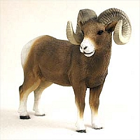Big Horn Sheep Standard Figurine