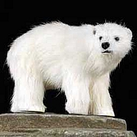 Bear Polar Fur Figurine