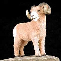 Big Horn Sheep Fur Figurine