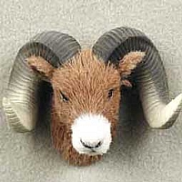 Big Horn Sheep Magnet Fur