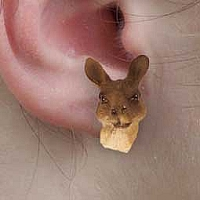 Kangaroo Earrings Post