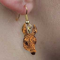 Armadillo Earrings Hanging