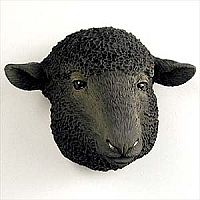Sheep Black Magnet
