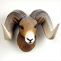 Big Horn Sheep Magnet