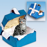 Silver Shorthaired Tabby Cat Gift Box Blue Ornament