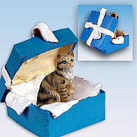 Brown Shorthaired Tabby Cat Gift Box Blue Ornament