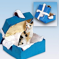 Tortoise & White Cornish Rex Gift Box Blue Ornament