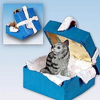 Silver Tabby Maine Coon Cat Gift Box Blue Ornament