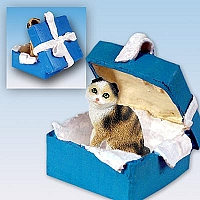 Tortoise & White Scottish Fold Gift Box Blue Ornament