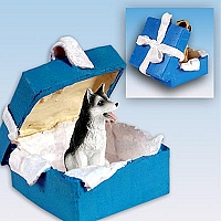Husky Black & White w/Brown Eyes Gift Box Blue Ornament