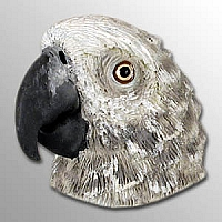 African Grey Magnet