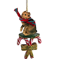 Brown Tabby Scottish Fold Candy Cane Ornament