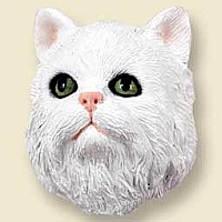 White Persian Doogie Head