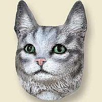 Silver Tabby Maine Coon Cat Doogie Head
