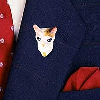 Tortoise & White Cornish Rex Pin