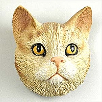 Red Shorthaired Tabby Cat Magnet