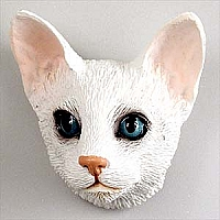 White Oriental Shorthaired Magnet