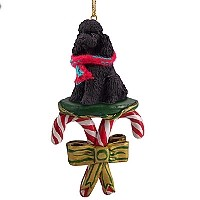 Poodle Black w/Sport Cut Candy Cane Ornament