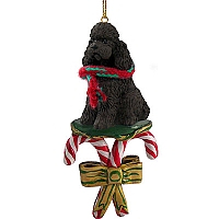 Poodle Chocolate w/Sport Cut Candy Cane Ornament