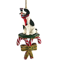 Pointer Black & White Candy Cane Ornament