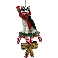 Husky Black & White w/Brown Eyes Candy Cane Ornament