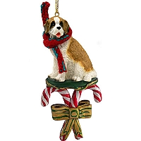 Saint Bernard w/Rough Coat Candy Cane Ornament