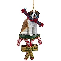 Saint Bernard w/Smooth Coat Candy Cane Ornament