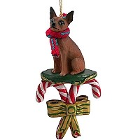 Miniature Pinscher Red & Brown Candy Cane Ornament
