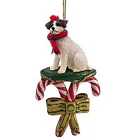 Jack Russell Terrier Brown & White w/Rough Coat Candy Cane Ornament