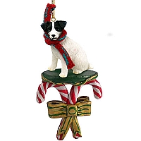 Jack Russell Terrier Black & White w/Rough Coat Candy Cane Ornament