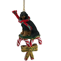 Gordon Setter Candy Cane Ornament