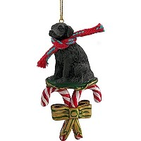 Flat Coated Retriever Candy Cane Ornament