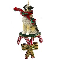 Australian Shepherd Blue w/Docked Tail Candy Cane Ornament