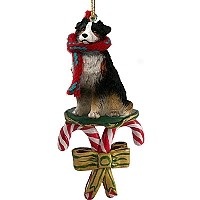 Australian Shepherd Tricolor Candy Cane Ornament