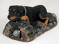 Rottweiler My Dog Special Edition