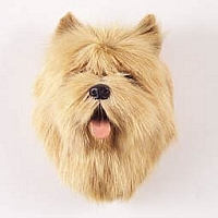 Cairn Terrier Red Fur Magnet
