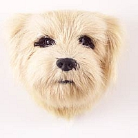 Norfolk Terrier Fur Magnet
