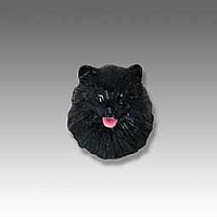 Pomeranian Black Tiny One head