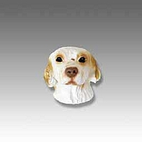 Clumber Spaniel Tiny One head