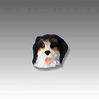 Bernese Mountain Dog Tiny One head