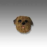 Norfolk Terrier Tiny One head