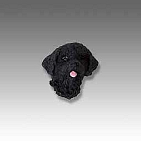 Portuguese Water Dog Tiny One head