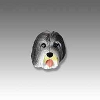Bearded Collie Tiny One head
