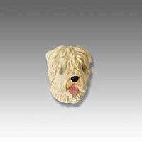 Soft Coated Wheaten Tiny One head