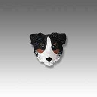 Australian Shepherd Tricolor w/Docked Tail Tiny One head
