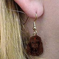 Poodle Chocolate Earrings Hanging