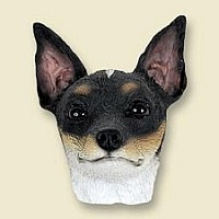 Rat Terrier Doogie Head