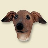 Italian Greyhound Doogie Head