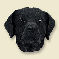 Labrador Retriever Black Doogie Head