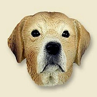 Labrador Retriever Yellow Doogie Head